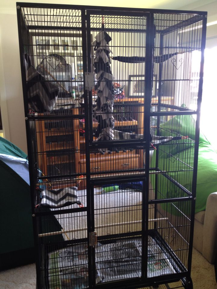 New cage decorations