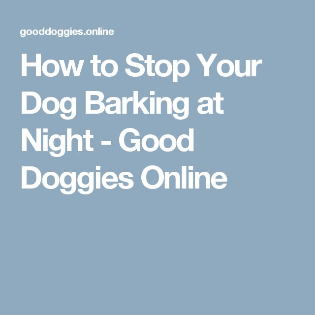 How to Stop Your Dog Barking at Night - Good Doggies Online