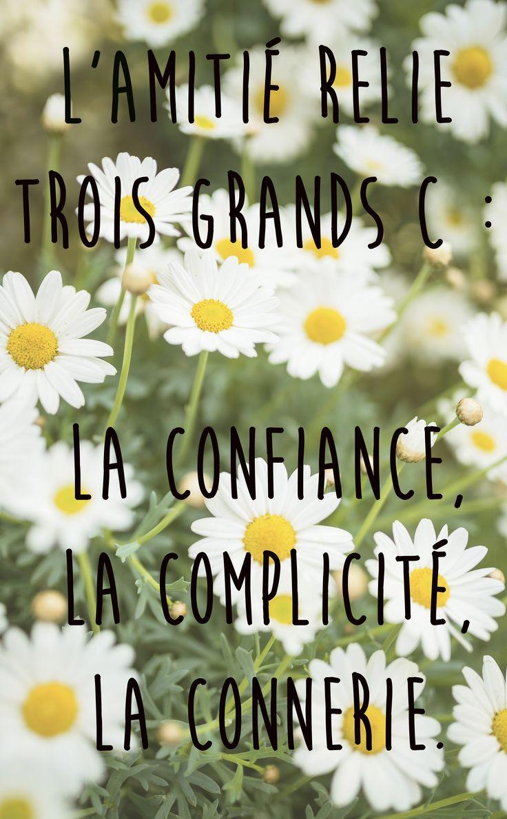 """""""L'amitié relie trois grands C : La confiance, La complicité, La connerie."""" L'occasion de revenir sur les plus belles citations d'amitié..."""