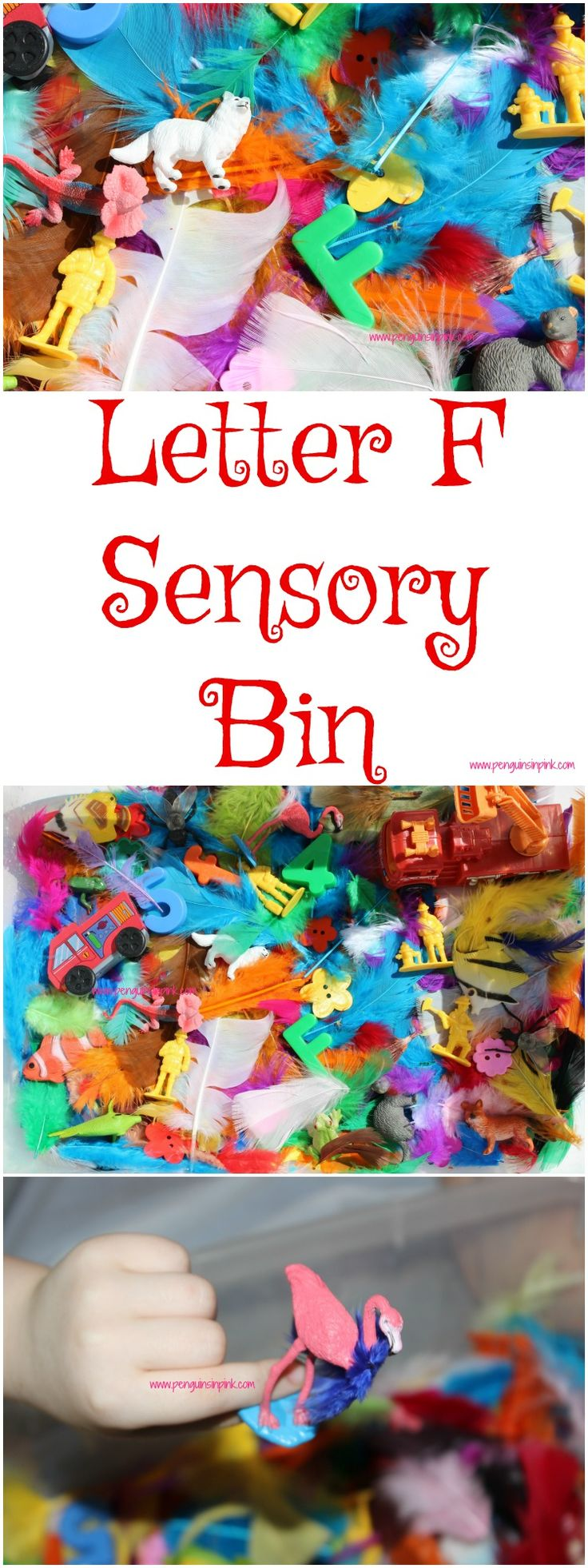 "Letter F Sensory Bin - This sensory bin has it all feathers, firetrucks, firemen, fish, and other items beginning with letter ""F""."