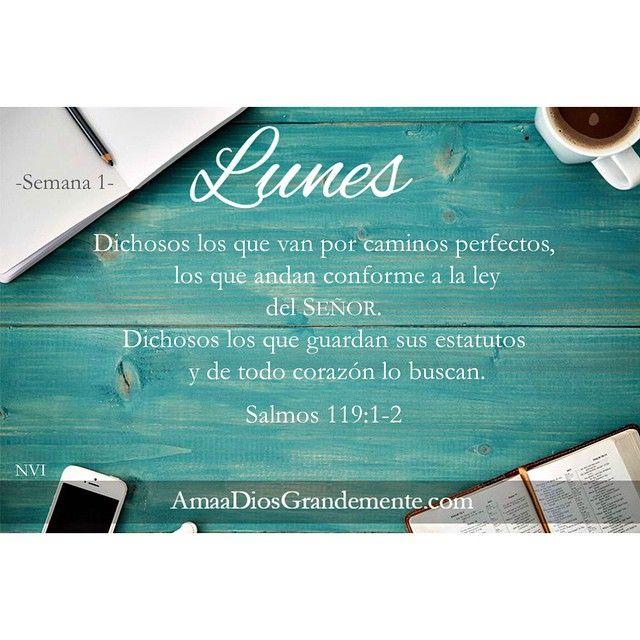 Lunes #Semana1 #Salmo119 #AmaaDiosGrandemente #LABIBLIA #MujeresenlaBiblia…