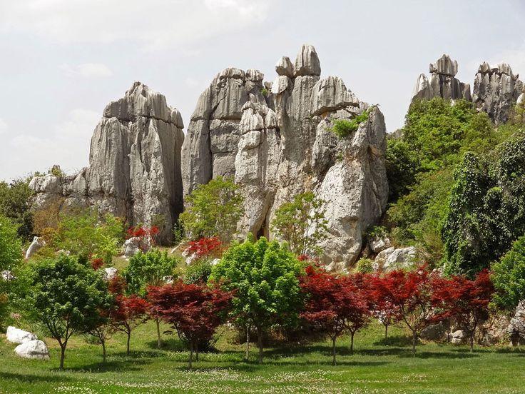 Bosque de Piedra – China Foto Annette Wood For