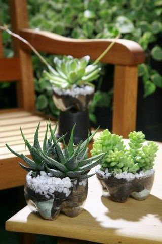 Fun plastic bottle recycling - Vertical garden or vases for succulents
