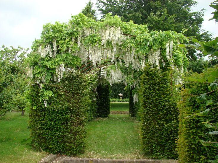 Als er goed wordt gekeken, kan er nog een pergola waar worden genomen. De planten begroeien het geheel, waardoor er een prachtig effect ontstaat.