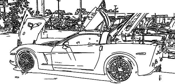 Corvette Cars, : Corvette Cars Exhibition Coloring Pages