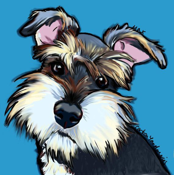 Schnauzer puppy art print by cartoonyourmemories on Etsy, $10.00