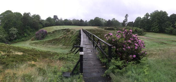 One of the famous foot bridges that cross heather lined ravines at The Addington Golf Club. Many a hopeful shot has seen a ball lost in the depths of the fescue beneath the bridges.