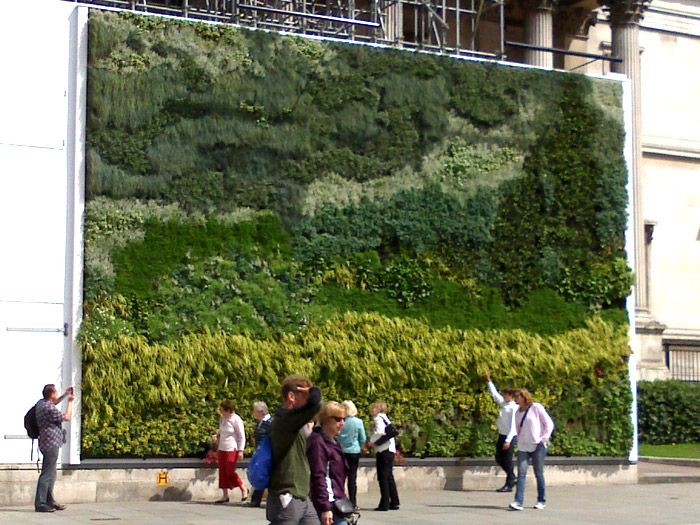 National Gallery Living Wall Installation By Scotscape