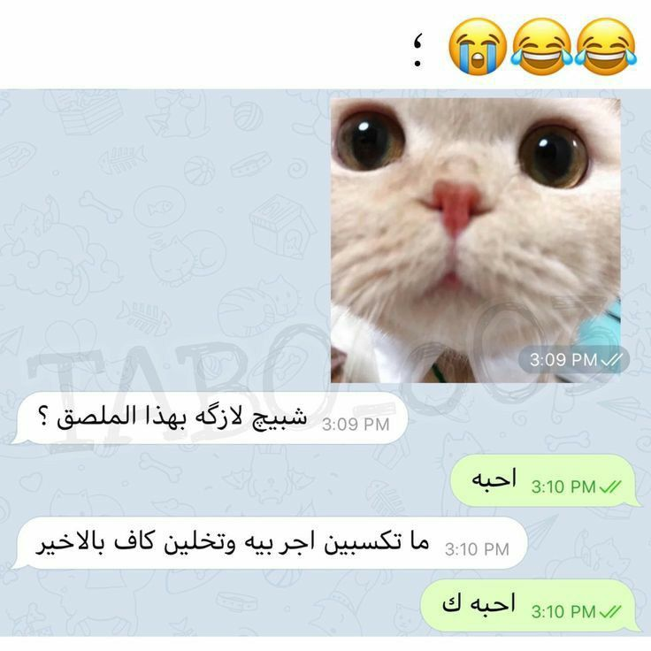Pin By مــيمــ On أضحك Dora Funny Cute Memes Cute Baby Boy Images