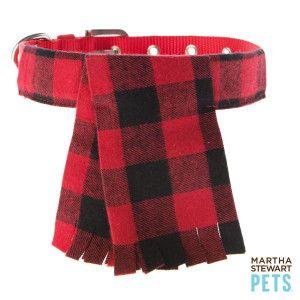 Martha Stewart Pets® Scarf Dog Collar | Collars | PetSmart