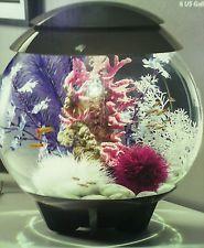 Halo biOrb fish tank 30 litre                                                                                                                                                      More