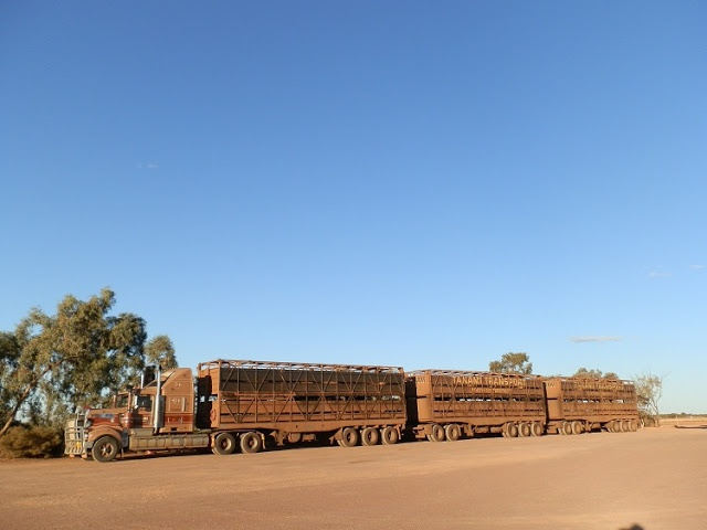 Roadtrains are part of any #Australian #Roadtrip - lucky this is just a small one ...