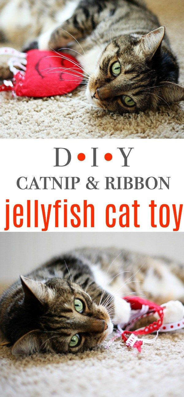 DIY Jellyfish Felt Catnip & Ribbon Cat Toy Tutorial & learn about World's Best Cat Litter #alitterbitamazing (AD) @bestcatlitter