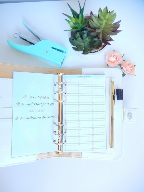 Best 20+ Agenda Organiseur Ideas On Pinterest | Calendrier Agenda