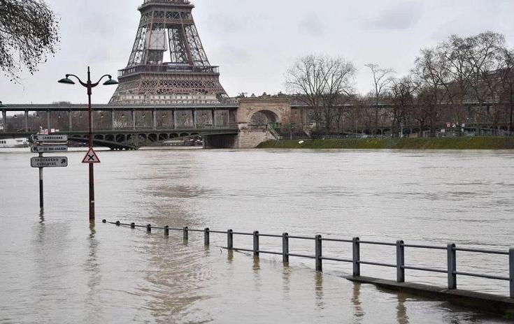 Pariisi joutui sulkemaan jokiliikenteen tulvien vuoksi, myös rotat evakossa