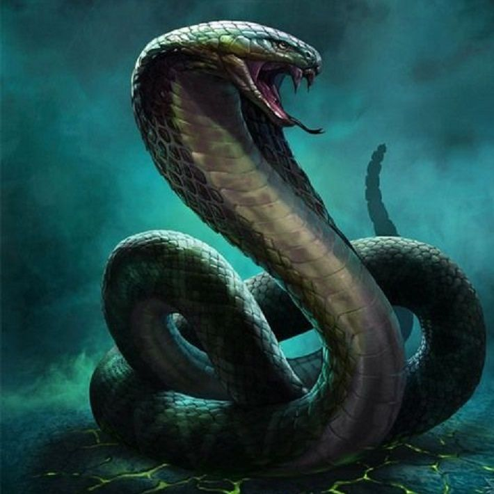 A nathair, one of the more deadly snakes in whole of Eama, living in forests south of the Talmiron sea.