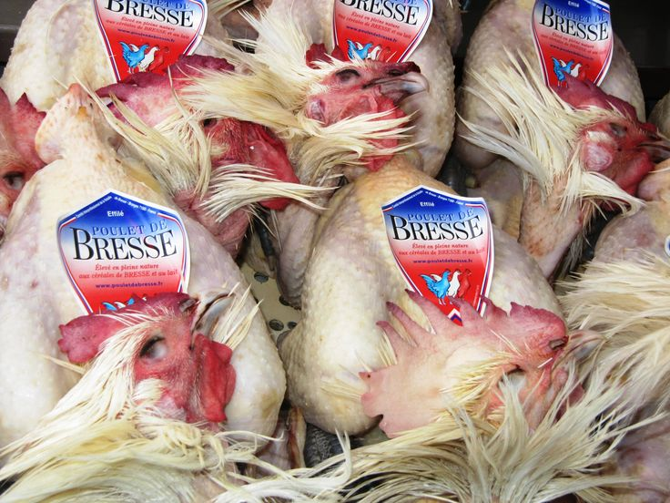 Poulet De Bresse and other varieities.
