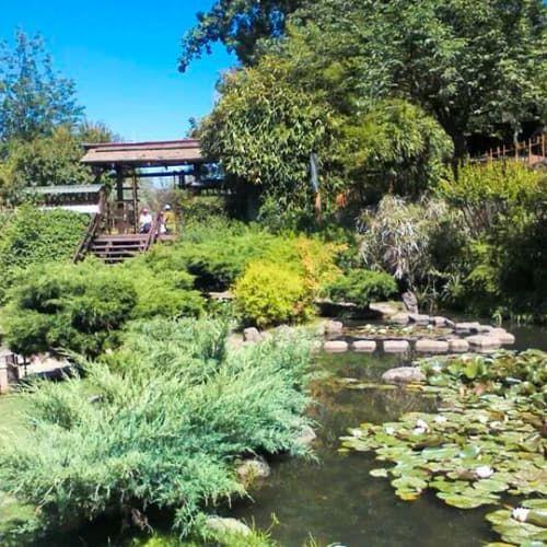 Jardín Japonés - Parque Metropolitano de Santiago en Bogotá 4