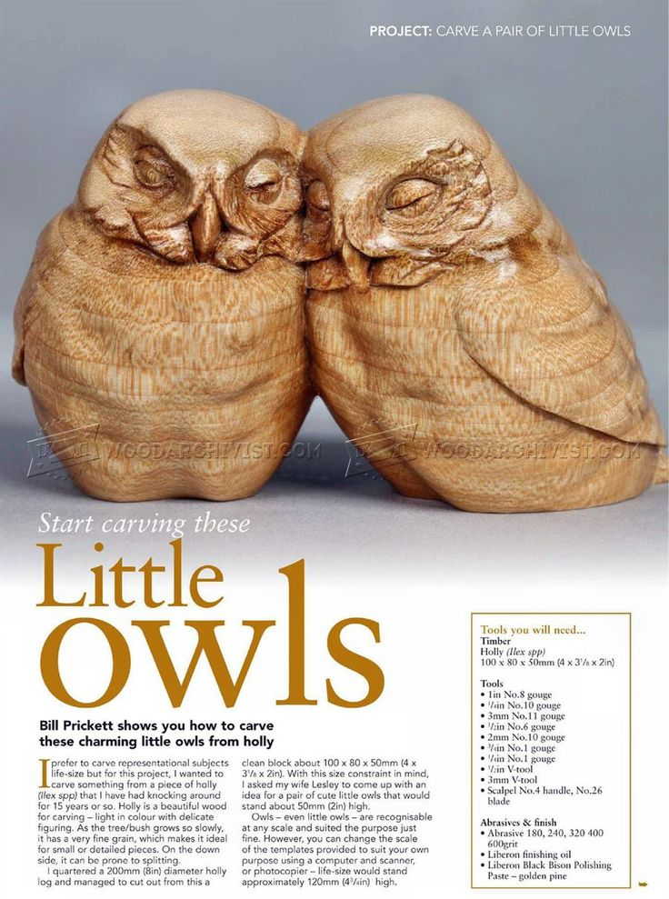 #255 Owl Carving - Wood Carving Patterns - Wood Carving