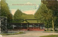 Grand Rapids MI~Lots of Full Trees, One Dead~Lincoln Park Pavilion~1910 Postcard