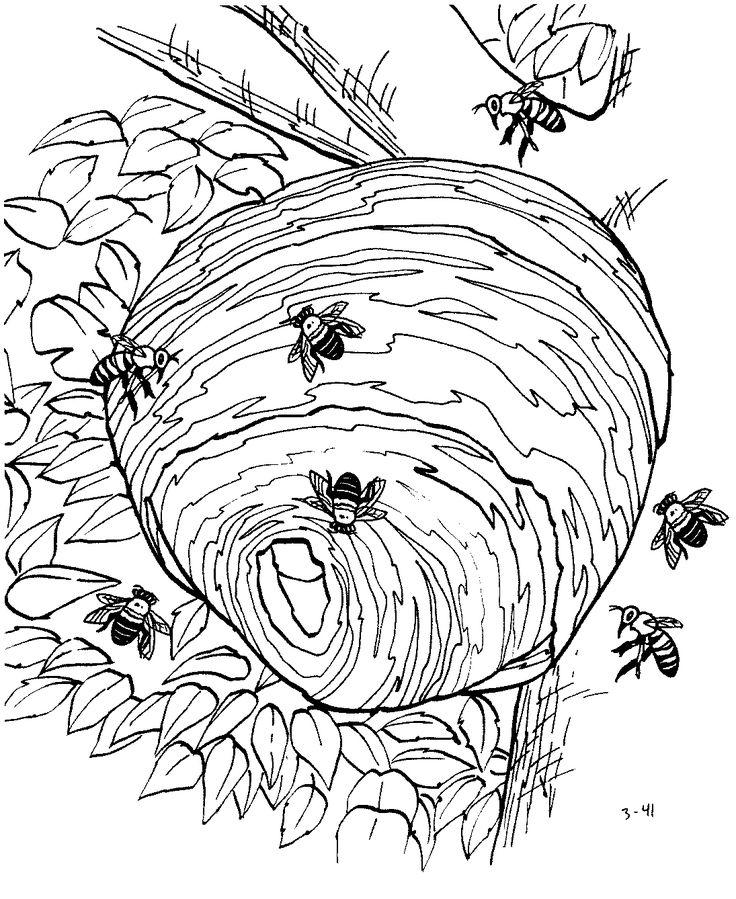 Kolorowanka pszczół