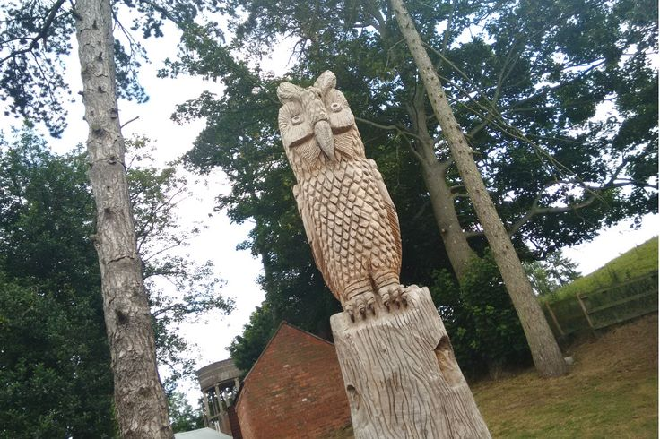 An owl carved from an old tree at Ellesmere College, Shropshire