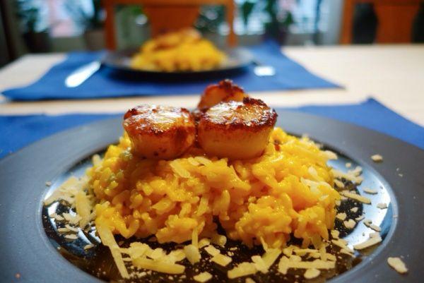 Saffransrisotto med pilgrimsmusslor. Saffron risotto with scallops.