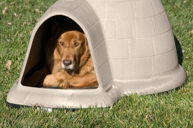 "Funky dog house - didn't know there was such a thing as a ""dogloo"" (dog igloo) http://toys4doggies.com/igloo-dog-house-for-large-dogs"