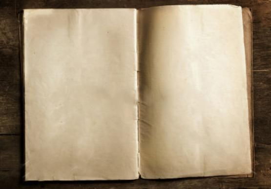 blank book pages  Google Search  bookbuilders  Blank book Book pages Books