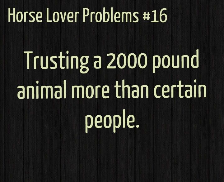 Honestly i trust my life with my horse where as i wouldn't trust most people i know with it