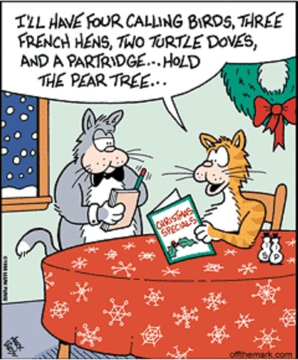 25+ Best Ideas About Christmas Humor On Pinterest