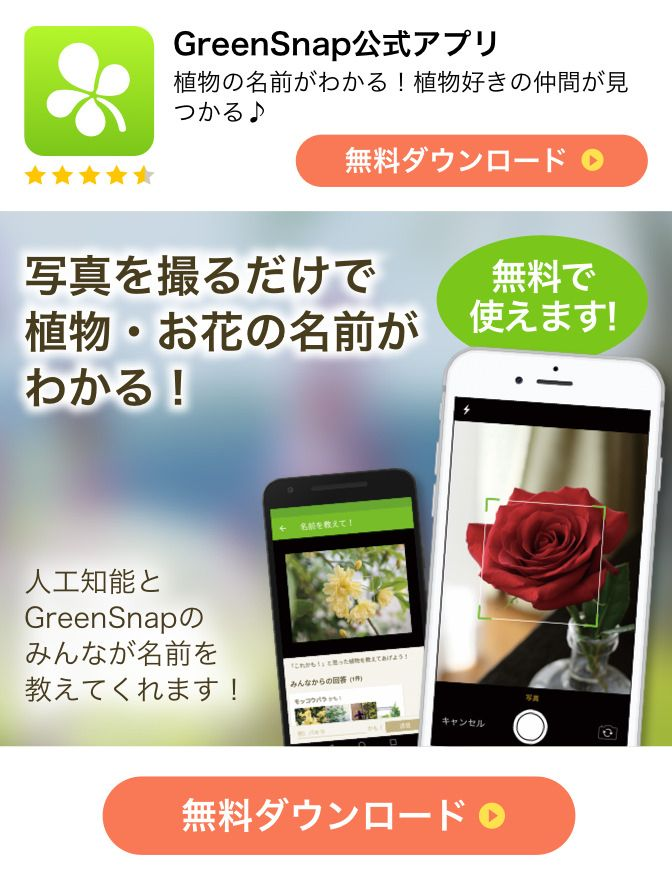 グリーン スナップ アプリ