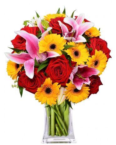 Rozvoz květin CINDY