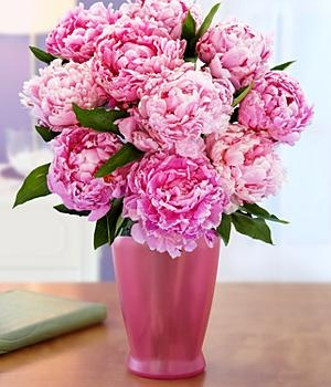 proflowers free shipping code radio 2012