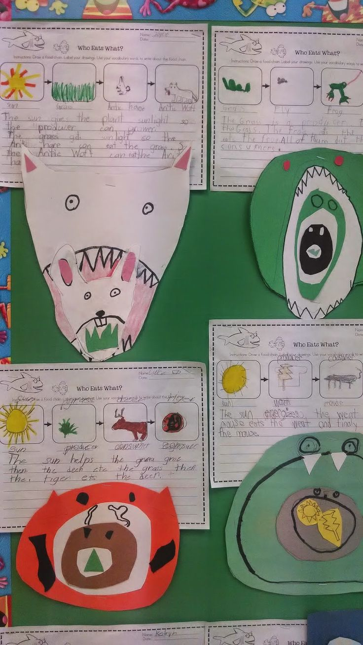 ...a Who Eats What food chain worksheet and then made a stacked food chain collage...