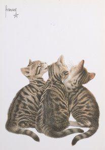 Francien Westering, Freddies 3 kittens. Meer werk van Francien kan je vinden op haar Facebook pagina https://www.facebook.com/FranciensKatten?fref=ts