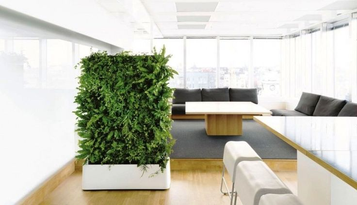 We can install at any location a beautiful tropical green room divider-moving hedge with a unique design, planting which is evergreen and will give a soothing feeling.
