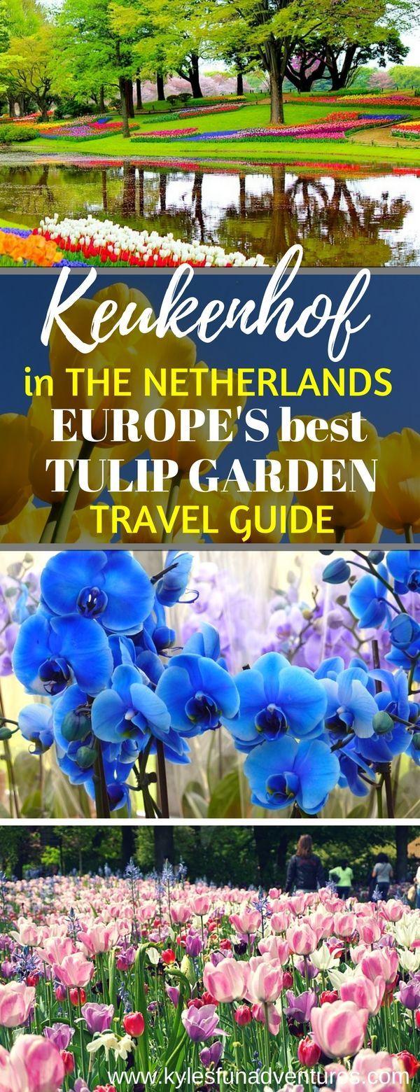 Keukenhof Garden in the Netherlands - Europe's Best Tulip Garden Travel Guide