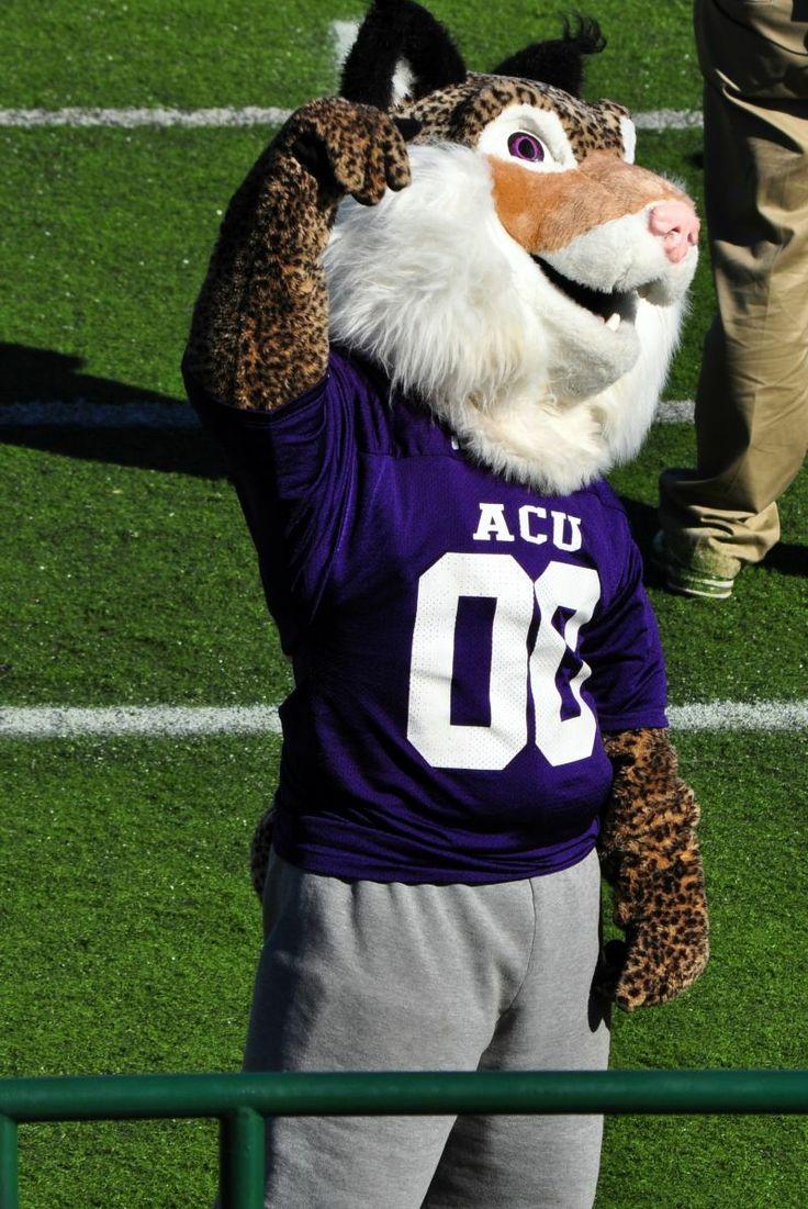 Abilene Christian University Wildcats Willie The Wildcat The Churches Of Christ In Abilene Backed The Need Fo Abilene Christian Christian College Live Mascot