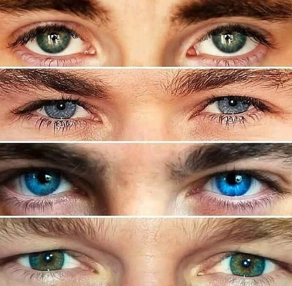 Chris Eyes | No, hands down, Piney's eyes are the most beautiful...