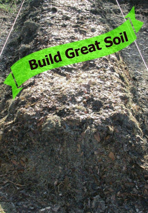 How to build million dollar vegetable garden soil for Vegetable garden soil