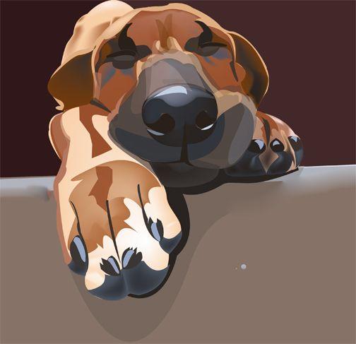 An illustration of a Rhodesian ridgeback puppy by Ina Regisford