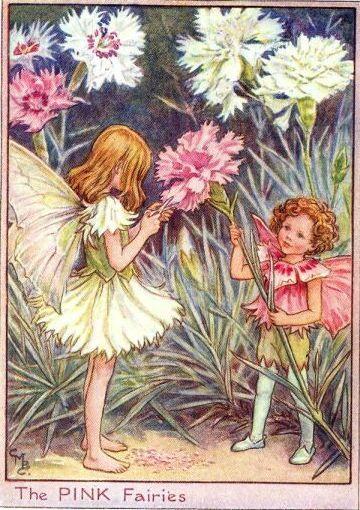 Pink fairies.