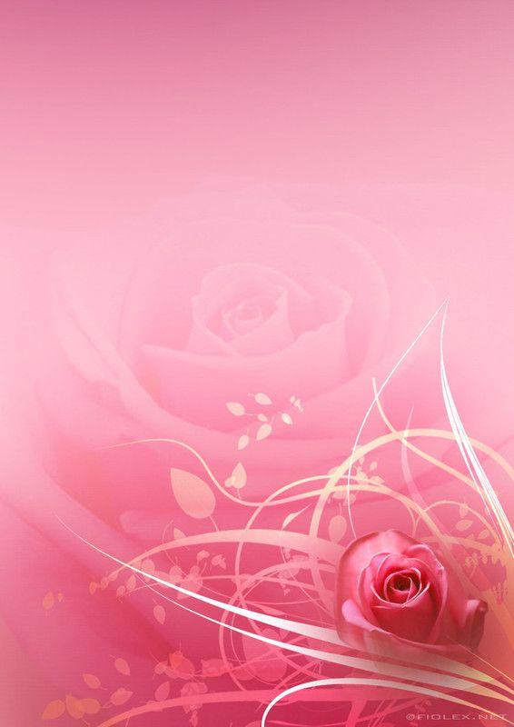 Soft whisper of Pink Roses <3