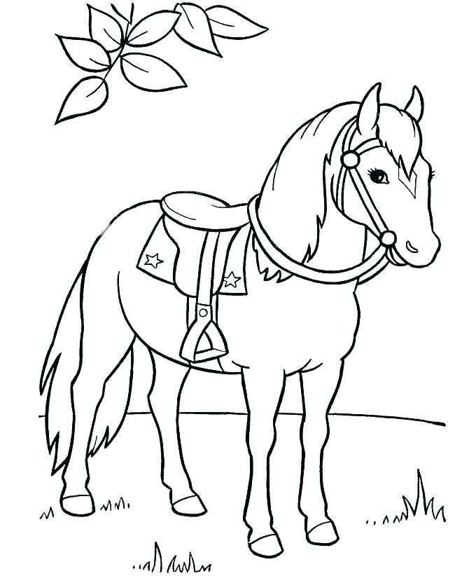 Printable Horse Coloring Page Youngandtae Com In 2020 Horse Coloring Books Horse Coloring Pages Horse Coloring