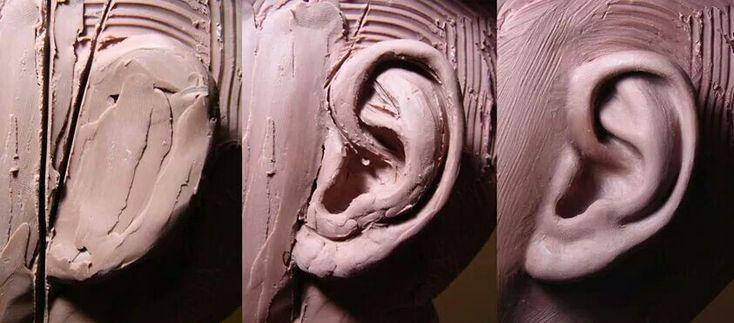 Dit is een plaatje van een oor dat wordt gekleid. Je kan goed zien hoe het oor is gemaakt en dat is heel handig voor mij.