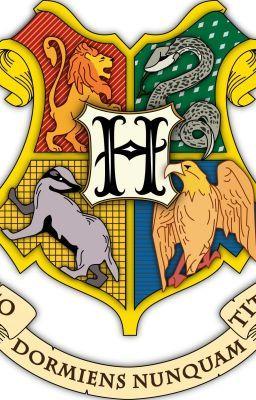 #wattpad #fan-fikce Ve Škole čar a kouzel v Bradavicích je místo opravdu pro každého. Naši hrdinové zažijí spoustu dobrodružství a vyfouknou Harrymu dva zážitky - Kámen mudrců a Turnaj tří kouzelníků. Kdo z nich se stane větším hrdinou?