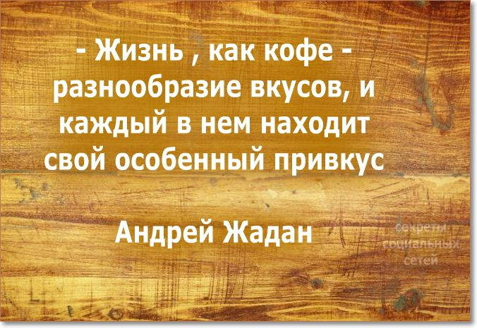 #цитаты #мотивация #мудрые_мысли
