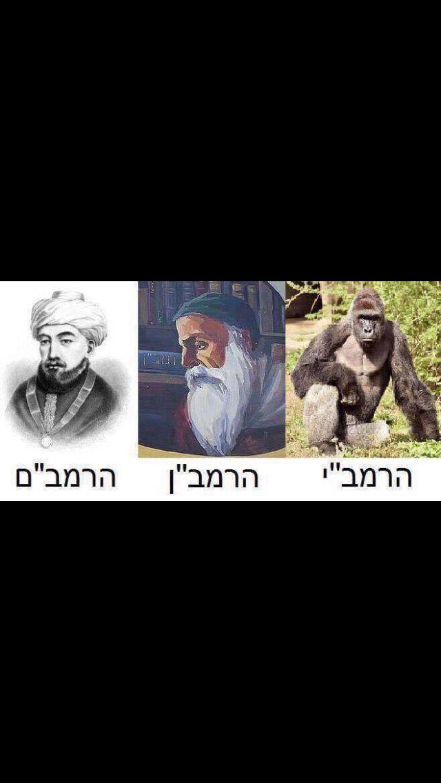 numerology + jewish new year(5772)