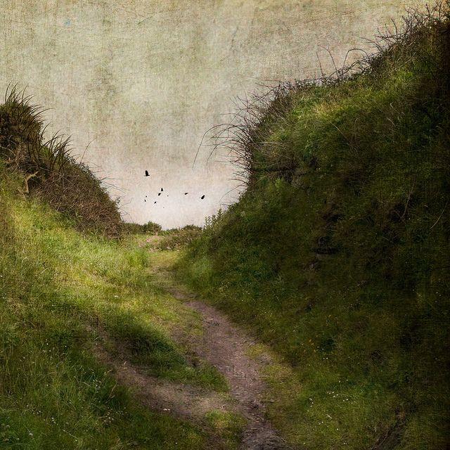 Jamie Heiden - The Brilliance of Ordinary